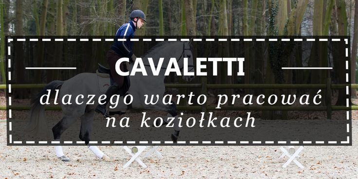 CAVALETTI, czyli pracuj na koziołkach. - Equishop blog