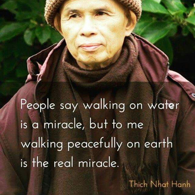 People say walking on water is a miracle, but to me walking peacefully on earth is the real miracle.          - Thict Nhan Hhan