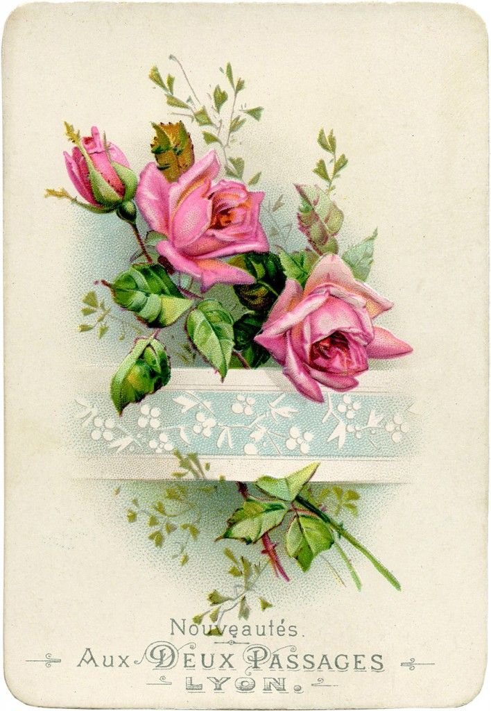 Vintage French Roses Image! | Featured here is a lovely Antique Trade Card from Lyon. The card shows some pretty Pink Roses, tucked into an embossed Paper Strip. So lovely!  Nice for your Mixed Media or Collage projects!