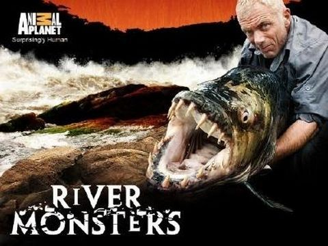 "river monster vf | Détails du Torrent ""River Monsters, monstres d'eau douce S03"" :: T411 ..."
