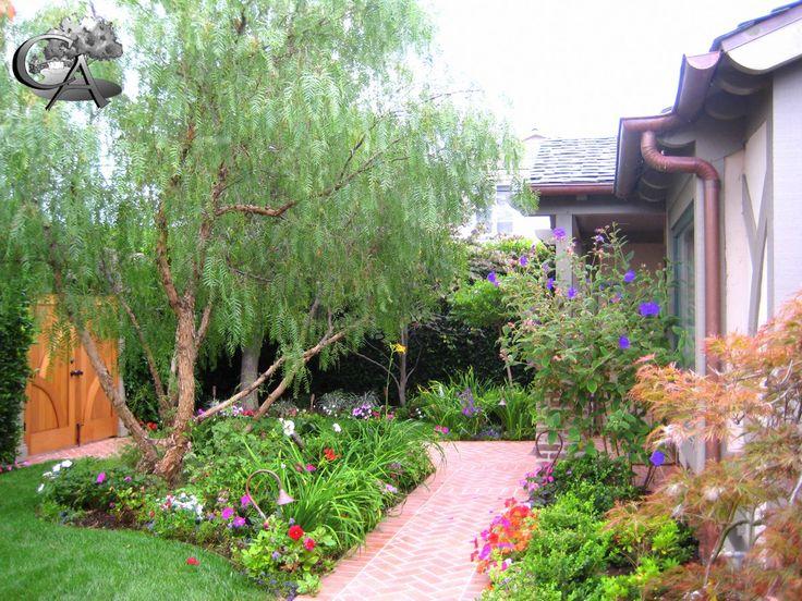 Garden Path, Natural Garden, Low Water Plants Landscape/Design/Build Orange  County