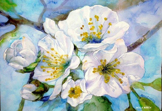 Cseresznye virág Aquarelle - 21 x 30 cm - by Márta Bolla - Hungary