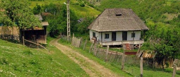 Valcea - Firijba