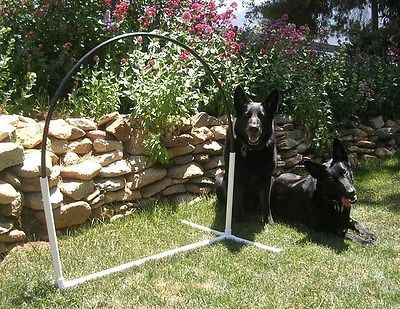 3 NADAC Hoopers Arched Hoops Dog Agility Equipment