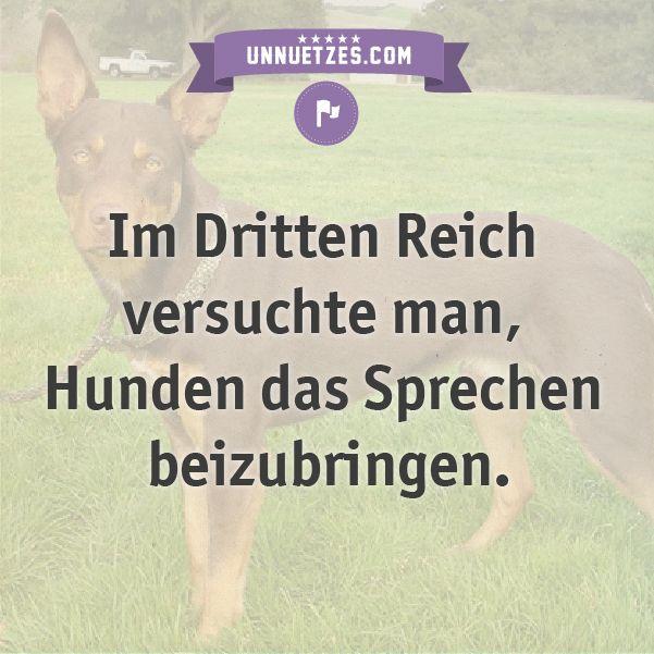 So sollten die Hunde reden lernen: http://www.unnuetzes.com/wissen/10852/hunde-sprechen-beibringen/