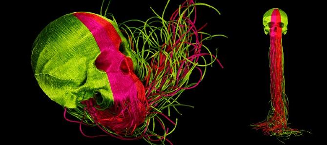 Los cráneos multiculturales de Jim Skull