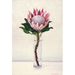 King Protea - original oil painting by Eleanor Butler available on workart.co.za