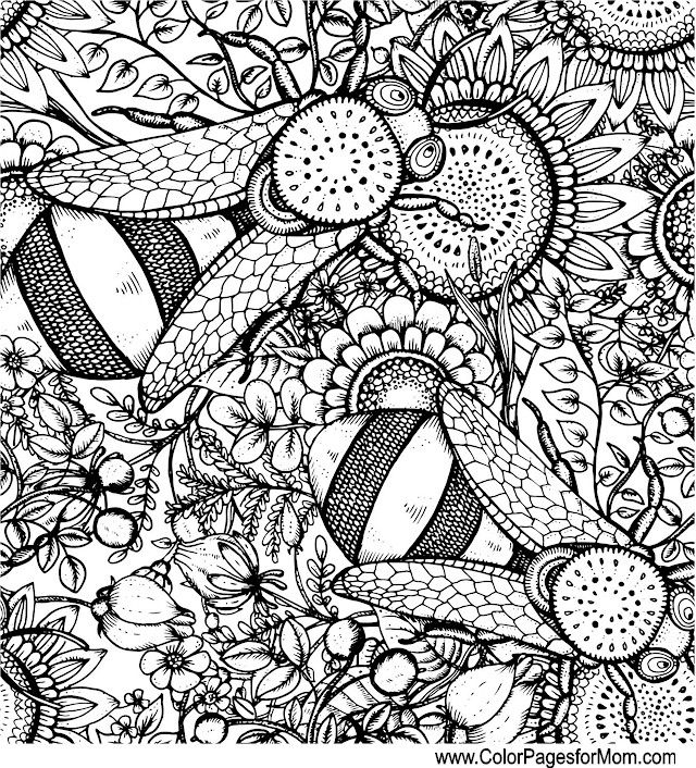 99 best Color Bug Pages images on Pinterest | Coloring books ...