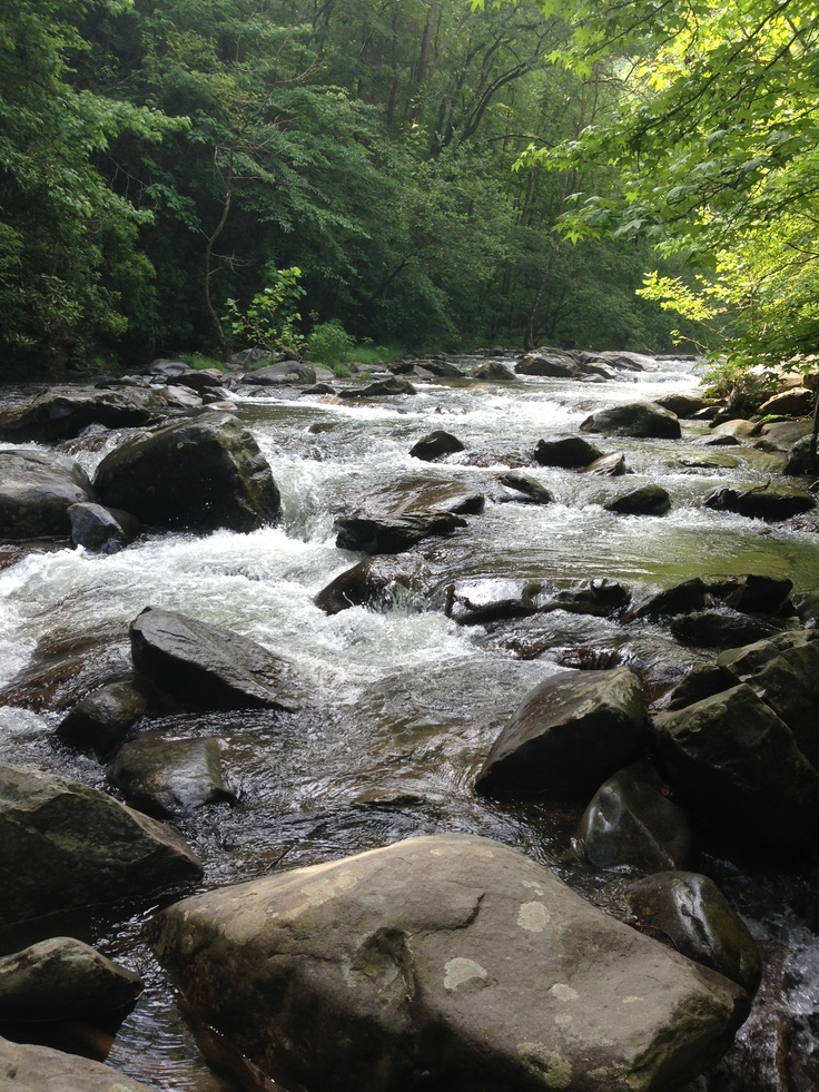 28 best things to do in blue ridge images on pinterest for Fly fishing blue ridge ga