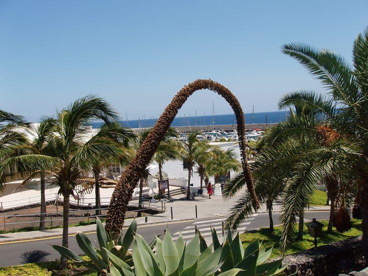 Lanzarote 2010 - Puerto Calero