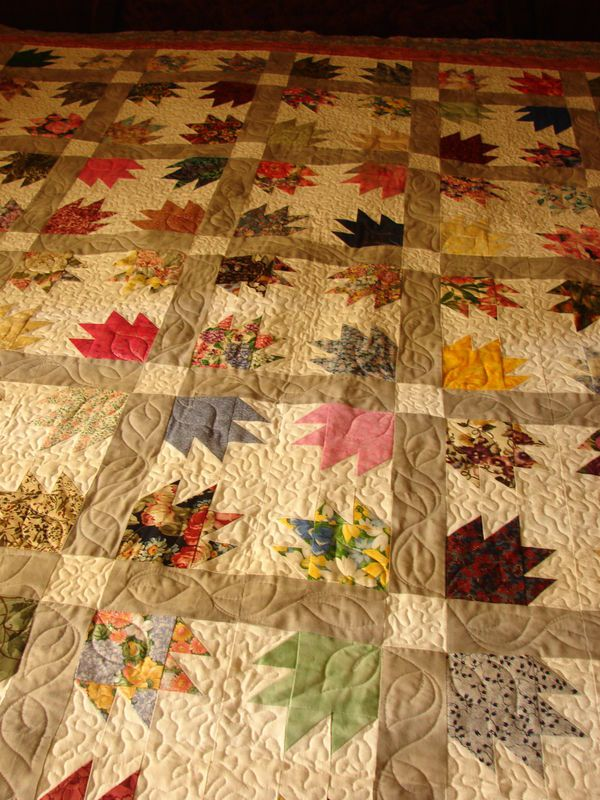 87 best Bears paws images on Pinterest | Bear paws, Carpets and ... : country quilts and bears - Adamdwight.com