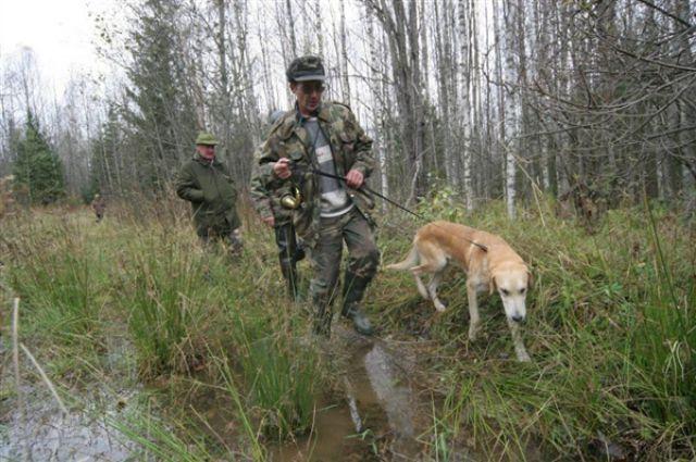 Планета Земля и Человек: На Ставрополье открывается охота на зайца и лису