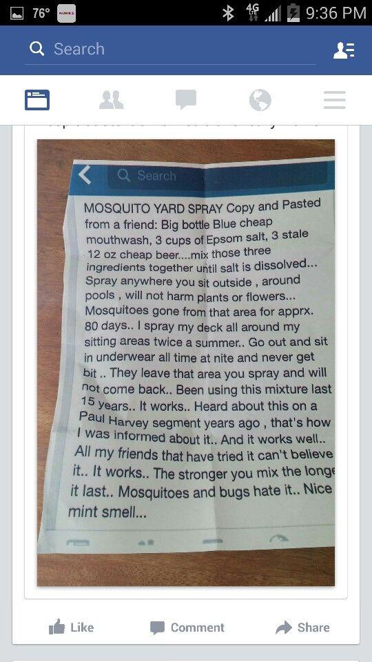 Mosquito Yard Spray. Home RemediesNatural RemediesGood IdeasOutdoor ...