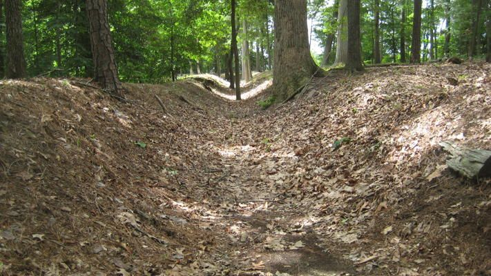 Battle of Cold Harbor - Virginia