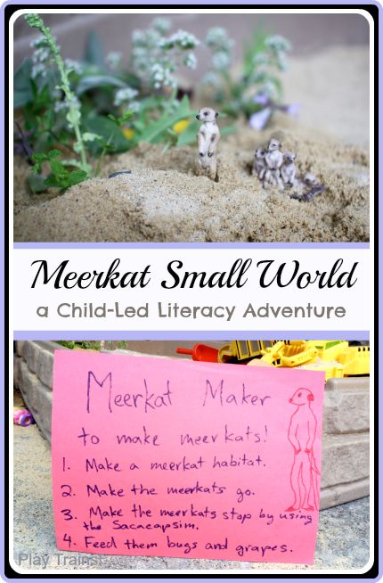 Meerkat Small World: a Child-Led Literacy Adventure | #Play Trains! guest posting for Housing a Forest.