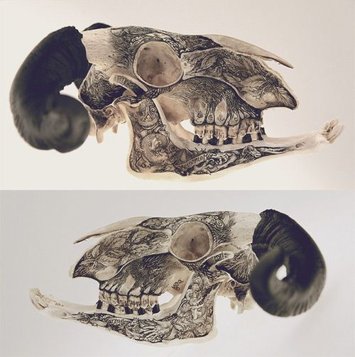 Mind-Boggling Illustrations Drawn On Stones And Bones