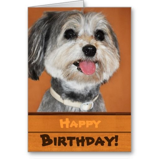 17 Best images about Dog Birthday Cards – Birthday Card from Dog