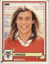 Cannigia