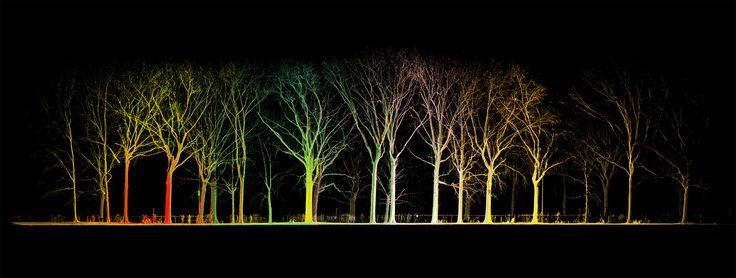 Point Cloud in Central Park by MYND Workshop // Laser Scanning // 3D Scanning // Point Clouds // CGI // 3D Modeling