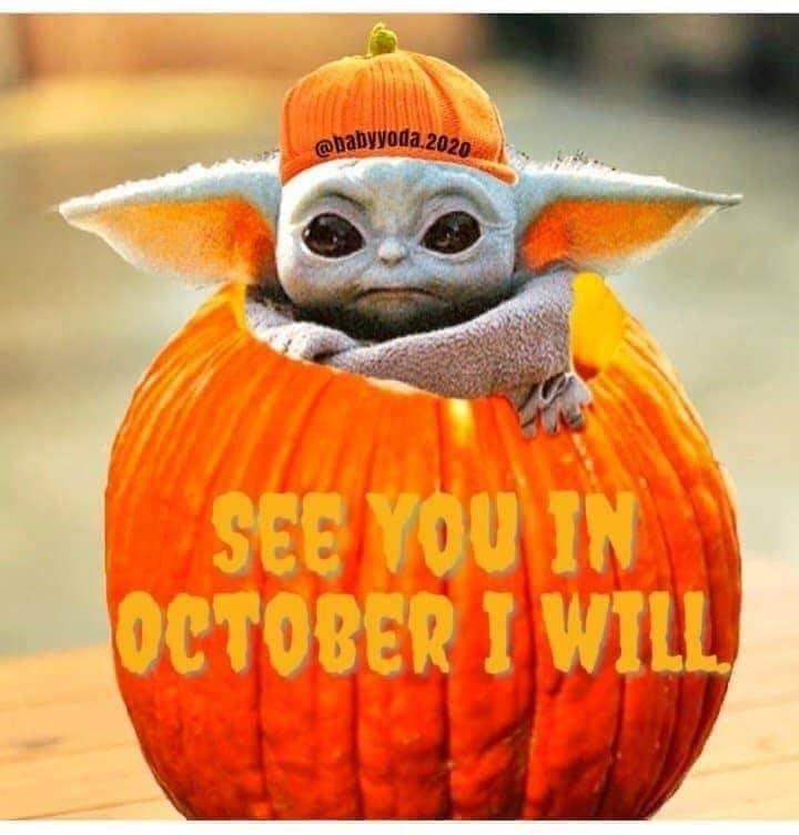 Pin By Nihash Rodriguez Martinez On Baby Yoda Yoda Funny Funny Star Wars Memes Yoda Meme