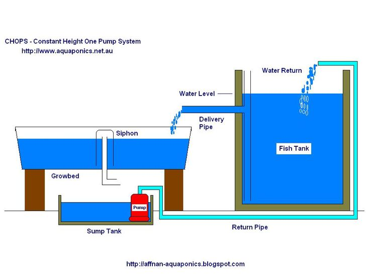 Aquaponics plans for free building an aquaponics system for Hydroponic raft system design