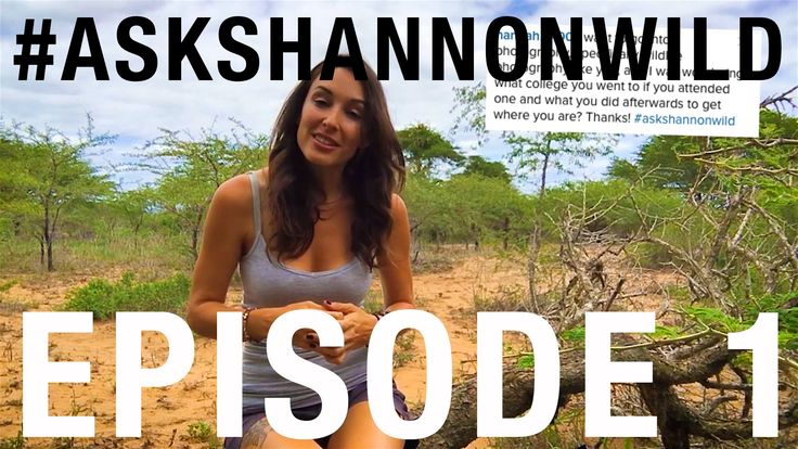 #AskShannonWild EP01 - How Did I Start Out?
