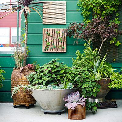 Cute patio cluster of plants - all mobile on wheels for easy maneuverabilityGardens Ideas, Pots Gardens, Container Gardens, Backyards Ideas Pots Plants, Cities, Side Yards, Gardens Projects, Gardens Landscapes, Backyards Plants