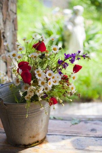 Die Besten 17 Bilder Zu Spring . Explosion Of Colours™ Auf ... Schnittblumen Frische Strause Garten