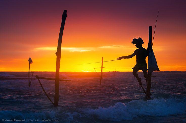 Sri Lanka's Stilt Fisherman by Anton Jankovoy, via 500px