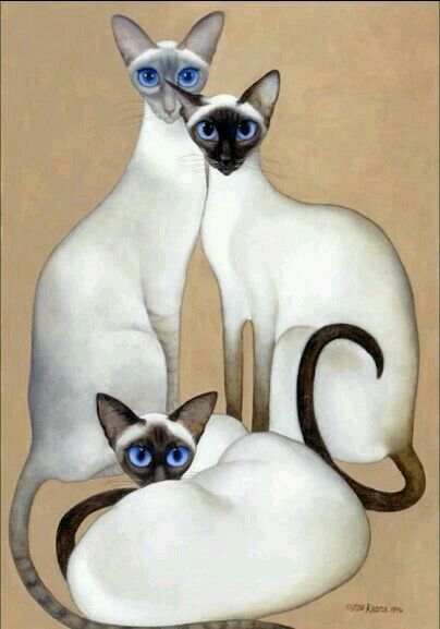"3 Siamese""Margareth Keane"""