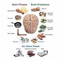 Brain threats - brain protectors