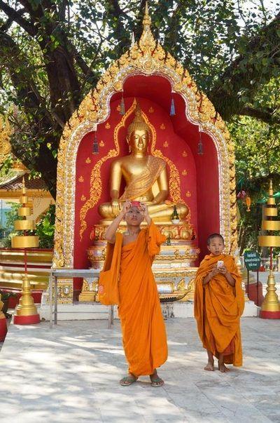 Meditation, stilhed og stof til eftertanke | Wat Phra That Phanom, Thailand | 20. - 29. juni 2014 eller 16. - 25. januar 2015 - Munonne