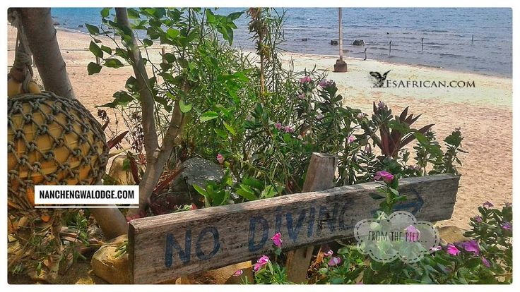 Don't worry. The #NoDiving only refers to from the pier.  #NanchengwaLodge #LakeMalawi