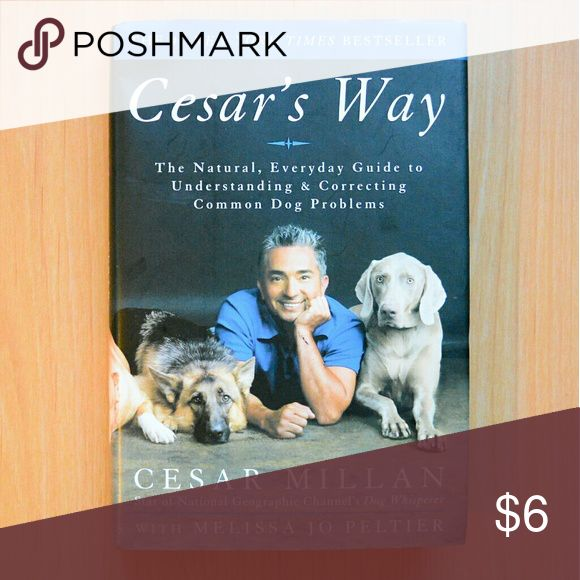 """""""Cesar's Way"""" Book by """"Dog Whisperer"""" Cesar Millan New, """"Cesar's Way; The Natural, Everyday Guide to Understanding & Correcting Common Dog Problems""""  By: Cesar Milan / Star of the TV Show """"Dog Whisperer"""" with Melissa Jo Peltier  272 Pages Cesar Millan Accessories"""