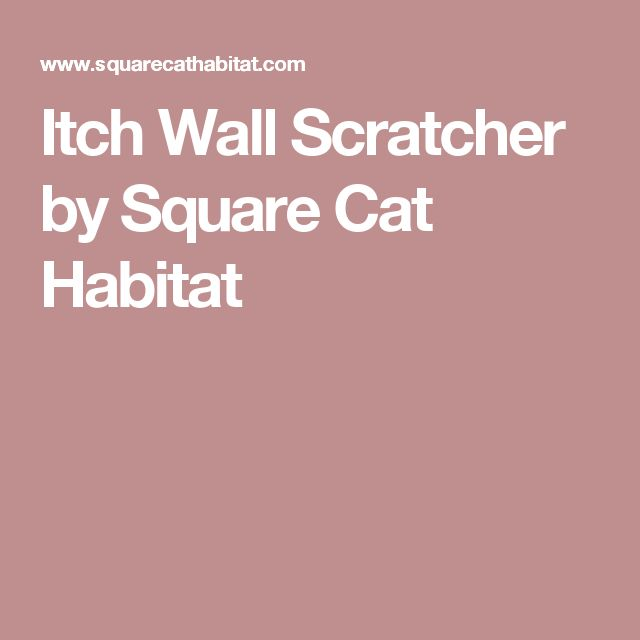 Itch Wall Scratcher by Square Cat Habitat