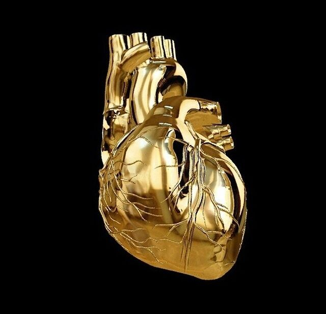 1411 best Sagrado corazon - anatomic heart images on ...