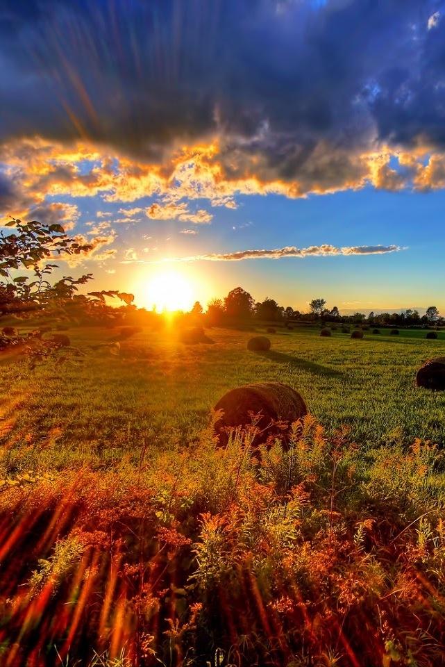 Beautiful sunset http://www.wpsubscribers.com/?hop=topogiyo  http://www.desktoplightingfast/Zorro123 http://www.laptoptrainingcollege.com http://www.meetyoursweet.com/?hop=topogiyo Like or repin is amazing. Check out All My Love by Noelito Flow =)
