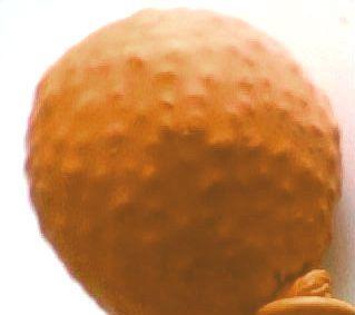 orange chiffon cake stress ball toy stress ball by dresstressballs