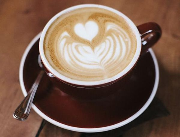 Sacred Grounds Organic Fairtrade Coffee