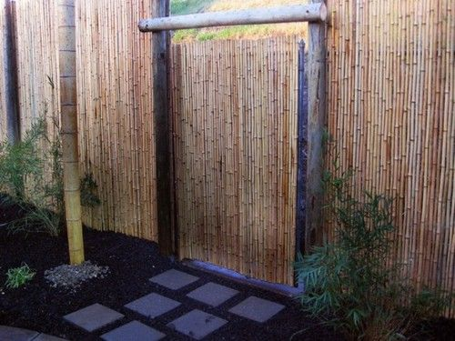 bamboo fence ideas could work around the hiding place for the green waste bin