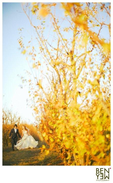 Margaret River. Perth, Bunbury Wedding Photographer