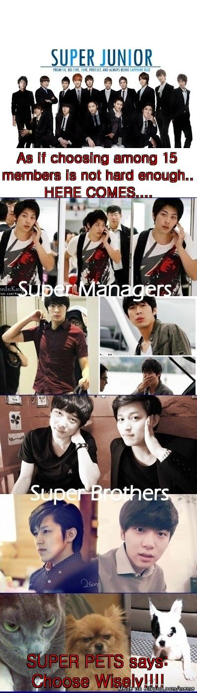 Suju, Managers, brothers and pets.. it's hard being an ELF