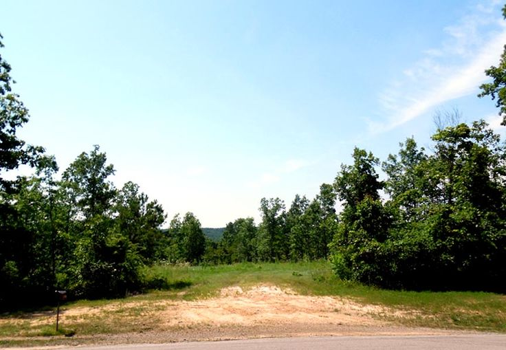 58 Acres With A Great Clearing To Build A Hunting Cabin!