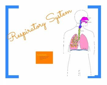 Use this TpT product to teach the Respiratory System: Trachea, Respiratory Epithelium, Bronchi, Alveoli. This leaves ppt presentations miles away!  The teacher decides what can be explored and how exhaustive the explanations can be. NGSS: LS1.A; MS-LS1-3; HS-LS1-2. Extract the files and run a file called Prezi.exe!