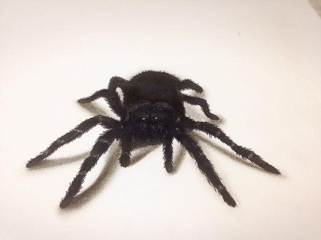 Spider 3d!