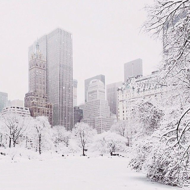NYC in the snow. Family travel tips @ familyglobetrotters.com