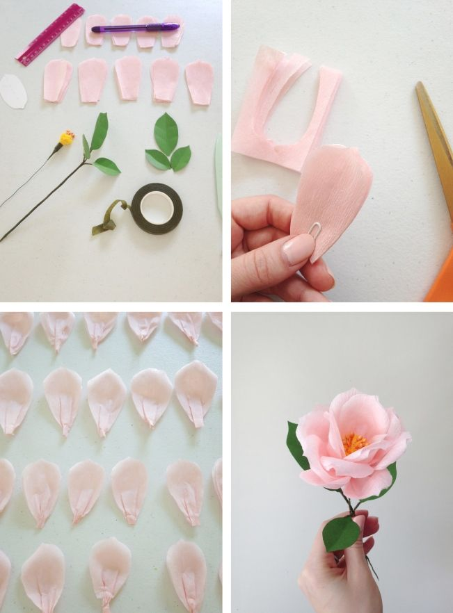 Book review the exquisite book of paper flowers diy kvty book review the exquisite book of paper flowers diy kvty vyroben z rznch materil pinterest book review flowers and books mightylinksfo