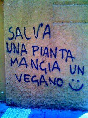 (via Star Walls - Scritte sui Muri: alimentazione sostenibile)Salva una pianta mangia un vegano :)