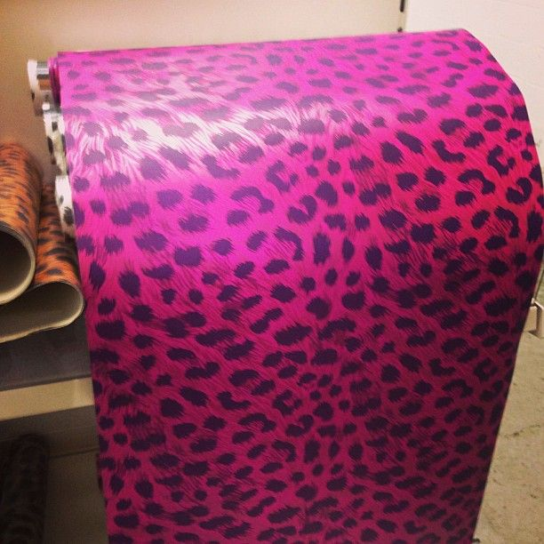 1000+ Images About Cheetah Print Stuff On Pinterest