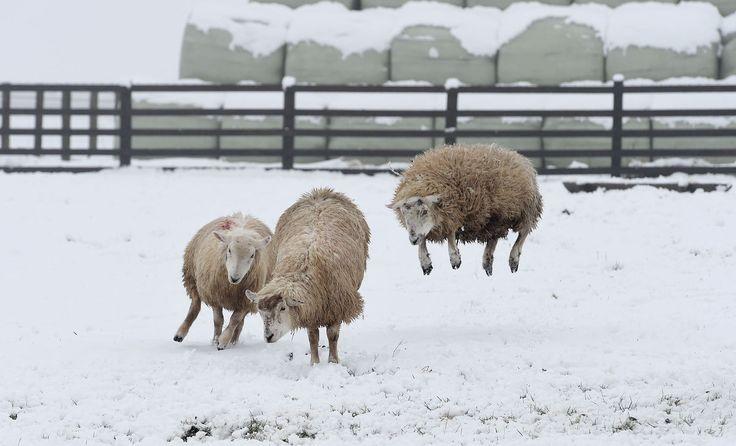 UK Weather Forecast Delivers Snow After A Week Of Sunshine
